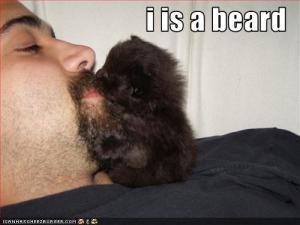 Kiss-skägg. Som toaring fast ändå inte.